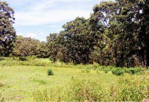Foto de terreno habitacional en venta en Atemajac de Brizuela, Atemajac de Brizuela, Jalisco, 6818855,  no 01