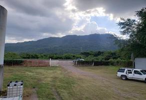 Foto de rancho en venta en  , 18 de agosto, tepic, nayarit, 0 No. 01