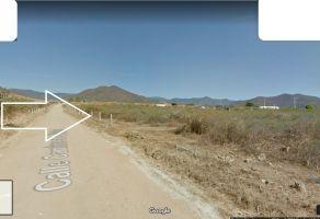 Foto de terreno habitacional en venta en Tlalixtac de Cabrera, Tlalixtac de Cabrera, Oaxaca, 5259188,  no 01