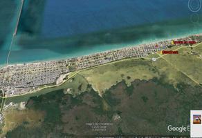 Foto de terreno habitacional en renta en 19 , chicxulub puerto, progreso, yucatán, 0 No. 01
