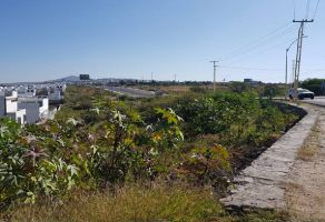 Foto de terreno habitacional en venta en El Pueblito, Corregidora, Querétaro, 15854848,  no 01