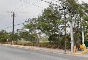 Foto de terreno comercial en venta en Residencial Cuauhtémoc, Santa Catarina, Nuevo León, 9775310,  no 01