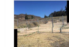 Foto de terreno habitacional en venta en La Primavera, Zapopan, Jalisco, 6819392,  no 01