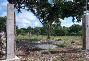 Foto de terreno habitacional en venta en Hunucmá, Hunucmá, Yucatán, 20634291,  no 01