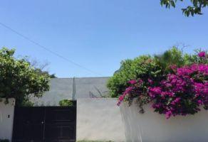 Foto de departamento en renta en Del Valle, San Pedro Garza García, Nuevo León, 17074234,  no 01
