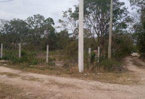 Foto de terreno habitacional en venta en Álamos I, Benito Juárez, Quintana Roo, 20894917,  no 01