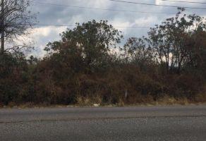 Foto de terreno habitacional en venta en Santa Catarina, Tepoztlán, Morelos, 16216105,  no 01