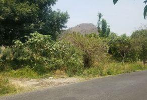 Foto de terreno habitacional en venta en Axocopan, Atlixco, Puebla, 21437359,  no 01