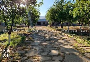 Foto de rancho en venta en  , 1o de mayo fovissste, hidalgo del parral, chihuahua, 13786134 No. 01