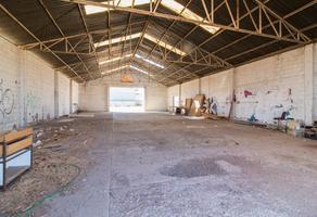 Foto de nave industrial en renta en  , 1ro de mayo, chihuahua, chihuahua, 15392216 No. 01