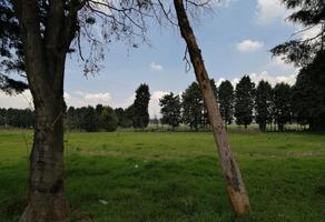 Foto de terreno habitacional en venta en 2 1, residencial las palmas, metepec, méxico, 0 No. 01