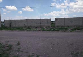 Foto de terreno habitacional en venta en 20 de noviembre 0, ciudad juárez, lerdo, durango, 16314549 No. 01