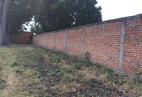 Foto de terreno habitacional en venta en 20 de noviembre , 20 de noviembre, zamora, michoacán de ocampo, 15168367 No. 01