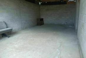 Foto de terreno habitacional en venta en 20 de septiembre , san gregorio cuautzingo, chalco, méxico, 0 No. 01
