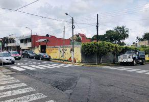 Foto de terreno comercial en renta en Fortín de las Flores Centro, Fortín, Veracruz de Ignacio de la Llave, 9301519,  no 01