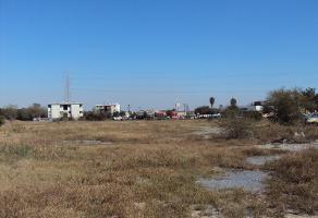Foto de terreno comercial en renta en  , 21 de enero, guadalupe, nuevo león, 1054991 No. 01