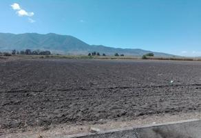 Foto de terreno habitacional en venta en 21 de marzo , santa paula, tlacolula de matamoros, oaxaca, 0 No. 01