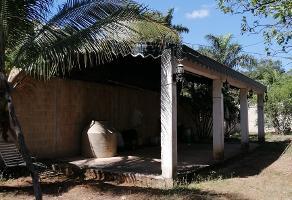 Foto de terreno habitacional en venta en 22 , santa maria chi, mérida, yucatán, 0 No. 02