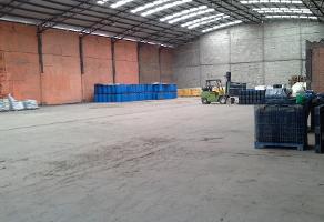 Foto de nave industrial en renta en San Baltasar Temaxcalac, San Martín Texmelucan, Puebla, 402606,  no 01