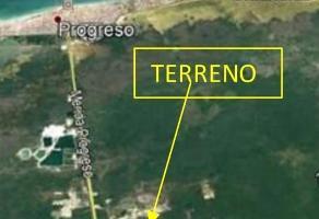 Foto de terreno habitacional en venta en  , 23 de noviembre, progreso, yucatán, 17282359 No. 02