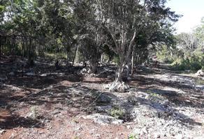 Foto de terreno habitacional en venta en  , 23 de noviembre, progreso, yucatán, 17439977 No. 01