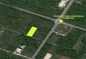 Foto de terreno habitacional en venta en 23 , san francisco de asís, conkal, yucatán, 0 No. 01