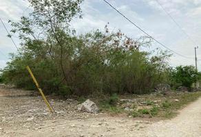 Foto de terreno habitacional en venta en 23 , ucu, ucú, yucatán, 0 No. 01