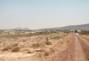 Foto de terreno habitacional en venta en San Miguel Tornacuxtla, San Agustín Tlaxiaca, Hidalgo, 5880535,  no 01