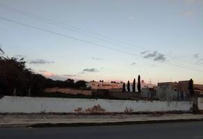 Foto de terreno habitacional en venta en 23a , san pedro cholul, mérida, yucatán, 0 No. 01