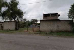 Foto de terreno habitacional en venta en El Armadillo, Tepic, Nayarit, 21597228,  no 01
