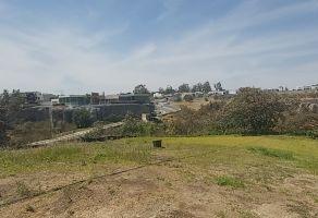 Foto de terreno habitacional en venta en Virreyes Residencial, Zapopan, Jalisco, 20116132,  no 01