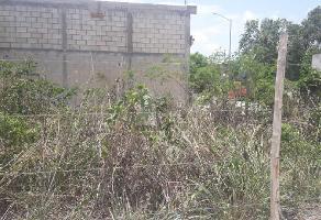 Foto de terreno comercial en renta en 24 , playa del carmen, solidaridad, quintana roo, 10711108 No. 01