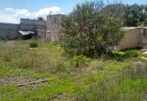 Foto de terreno comercial en venta en CANACINTRA, Mineral de la Reforma, Hidalgo, 20238047,  no 01