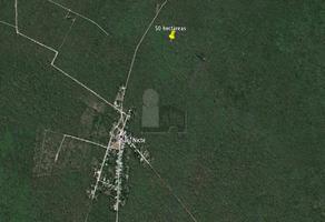 Foto de terreno comercial en venta en 25 , sac-nicte, mérida, yucatán, 6384695 No. 01