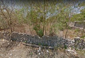 Foto de terreno habitacional en venta en 26a , hunucmá, hunucmá, yucatán, 0 No. 01