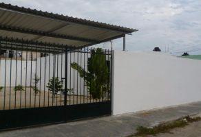 Foto de casa en renta en Francisco de Montejo, Mérida, Yucatán, 16183482,  no 01