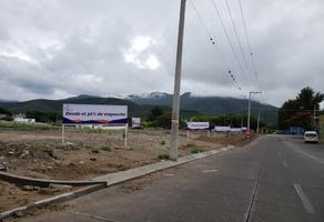 Foto de terreno habitacional en venta en 27 norte , nueva españa, tehuacán, puebla, 8586113 No. 01