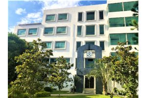 Foto de edificio en venta y renta en Arboledas, Saltillo, Coahuila de Zaragoza, 7552518,  no 01