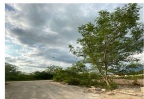 Foto de terreno habitacional en venta en 28 , chicxulub, chicxulub pueblo, yucatán, 0 No. 01