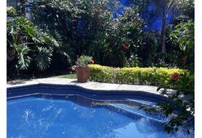 Foto de departamento en renta en Reforma, Cuernavaca, Morelos, 20074210,  no 01