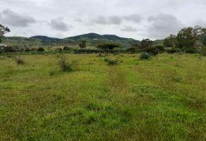 Foto de terreno habitacional en venta en Simpanio Norte, Morelia, Michoacán de Ocampo, 18817092,  no 01