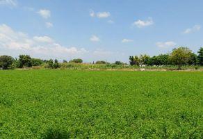 Foto de terreno habitacional en venta en La Sabana (San Juan la Sabana), Atlixco, Puebla, 22026511,  no 01