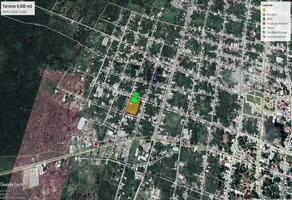 Foto de terreno comercial en renta en 29 , izamal, izamal, yucatán, 8704208 No. 01