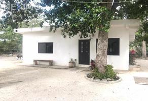 Foto de terreno habitacional en venta en 293 958, leona vicario, felipe carrillo puerto, quintana roo, 20550523 No. 01