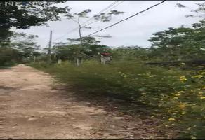 Foto de terreno comercial en venta en 295 373, leona vicario, felipe carrillo puerto, quintana roo, 20588060 No. 01
