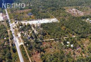 Foto de terreno comercial en venta en 295 398, leona vicario, felipe carrillo puerto, quintana roo, 20588060 No. 01