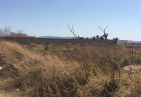 Foto de terreno industrial en venta en Albaterra, Zapopan, Jalisco, 6917795,  no 01