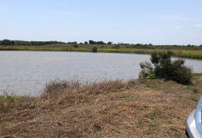 Foto de rancho en venta en Altamira, Altamira, Tamaulipas, 21903047,  no 01