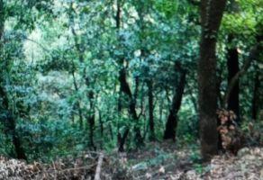 Foto de terreno habitacional en venta en Bosques de San Ángel Sector Palmillas, San Pedro Garza García, Nuevo León, 16448221,  no 01