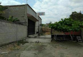Foto de local en renta en 2da. sur poniente , terán, tuxtla gutiérrez, chiapas, 0 No. 01